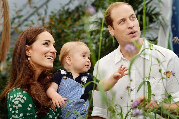Принц Джордж рассматривает бабочек