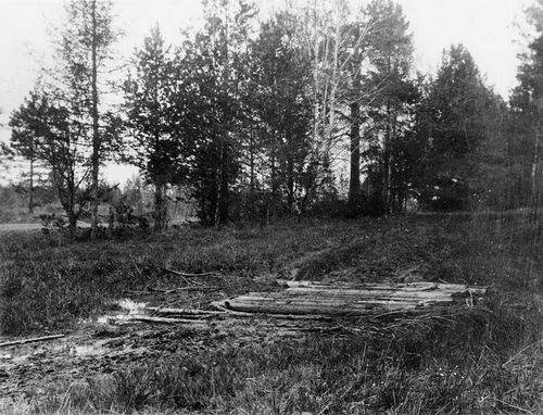 Место захоронения на Коптяковской дороге