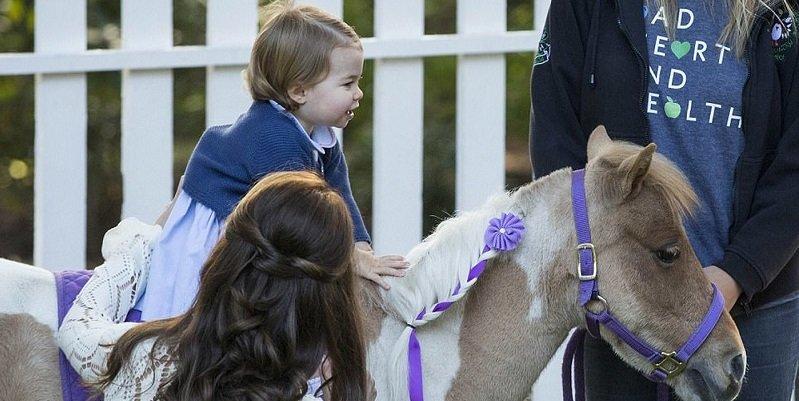 Шарлотта на лошади
