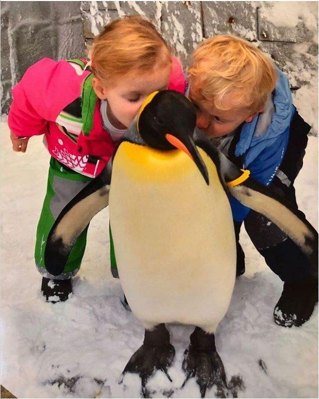 Принц Жак и принцесса Габриэлла целуют пингвина