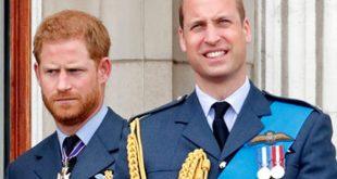Почему у детей принцев Уильяма иГарри разные фамилии