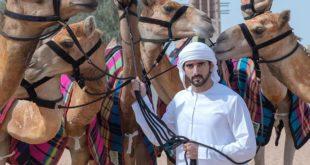 Наследный принц Дубая Хамдан: 10 фактов о старшем сыне шейха Мохаммеда