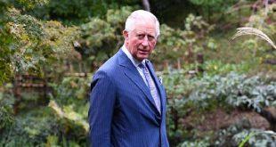 Принц Чарльз впервые появился на публике после заражения коронавирусом