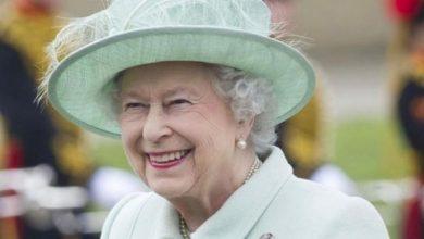 Photo of Елизавета II впервые приняла участие в видеоконференции посвященной Неделе опекунов