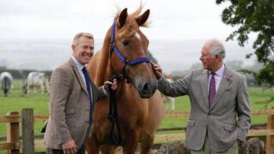 Photo of Принц Чарльз посетил ферму по разведению редких пород домашнего скота