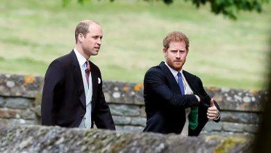 Photo of Принц Уильям и принц Гарри обвиняются в финансовых махинациях