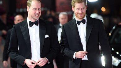 Photo of Принц Уильям и принц Гарри сделали совместное заявление об открытии памятника принцессе Диане