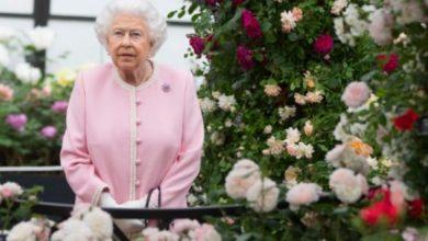 Photo of Елизавета II впервые появилась на публике, проведя 7 месяцев в уединении из-за пандемии